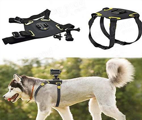 Hound Dog Fetch Harness ChesT-strap Belt Mount